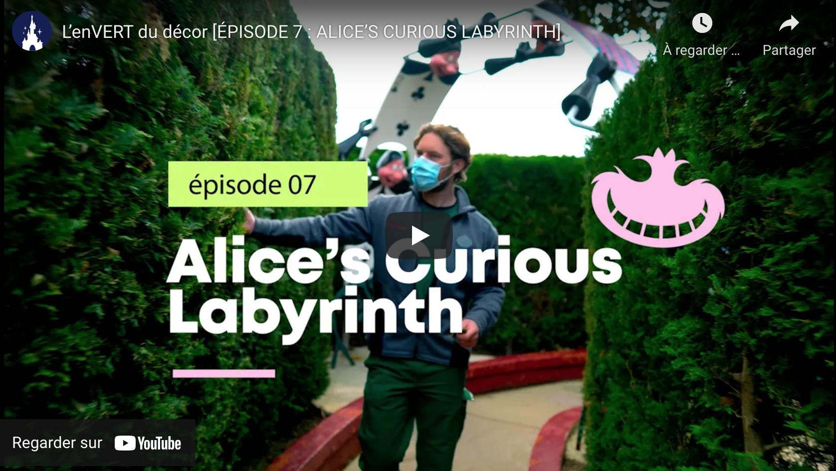 Alice abyrinth